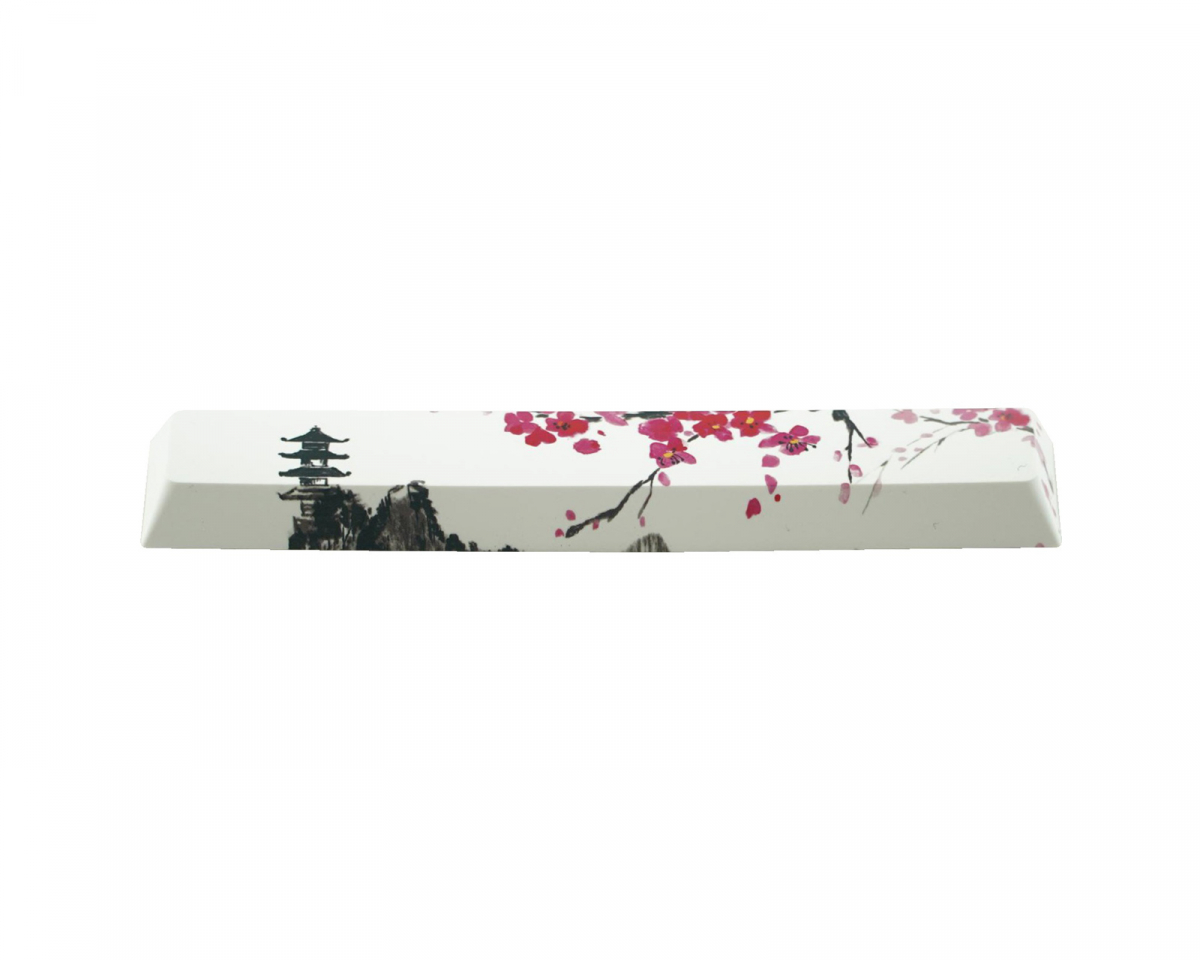 PBT Dye-sublimated Spacebar - 32 Sakura in the group PC Peripherals / Keyboard Accesories / Keycaps at MaxGaming (100030)